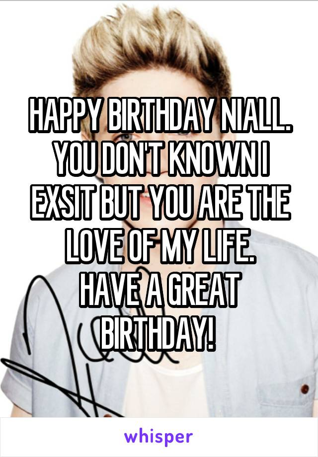 HAPPY BIRTHDAY NIALL. YOU DON'T KNOWN I EXSIT BUT YOU ARE THE LOVE OF MY LIFE. HAVE A GREAT BIRTHDAY!