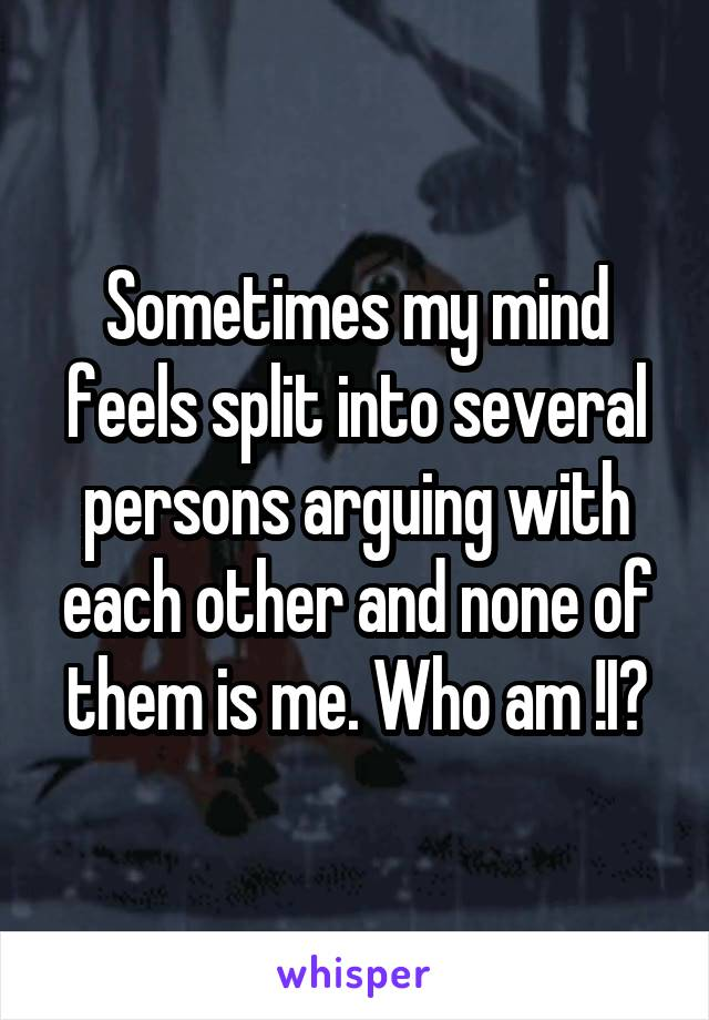 Sometimes my mind feels split into several persons arguing with each other and none of them is me. Who am !I?