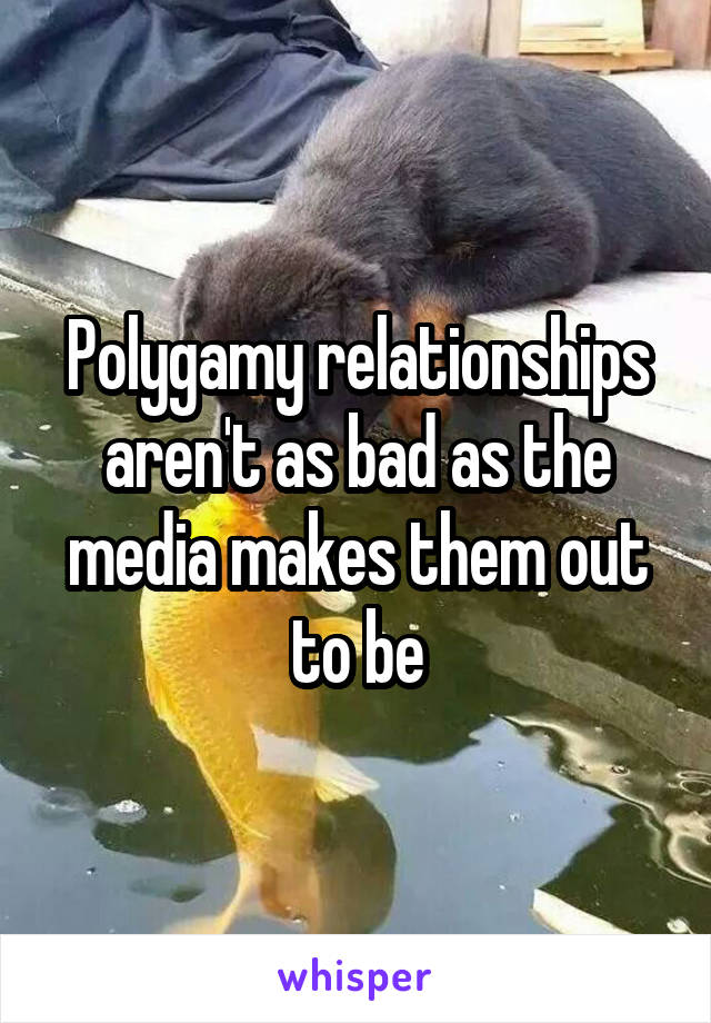 Polygamy relationships aren't as bad as the media makes them out to be