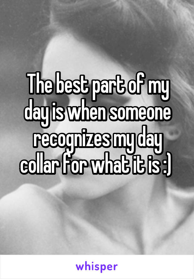 The best part of my day is when someone recognizes my day collar for what it is :)