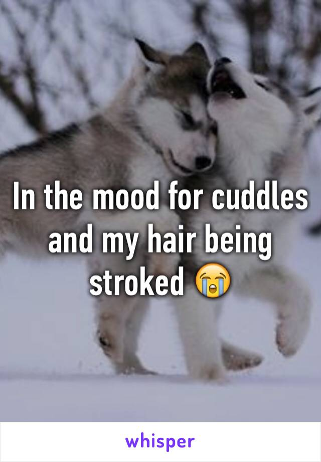 In the mood for cuddles and my hair being stroked 😭