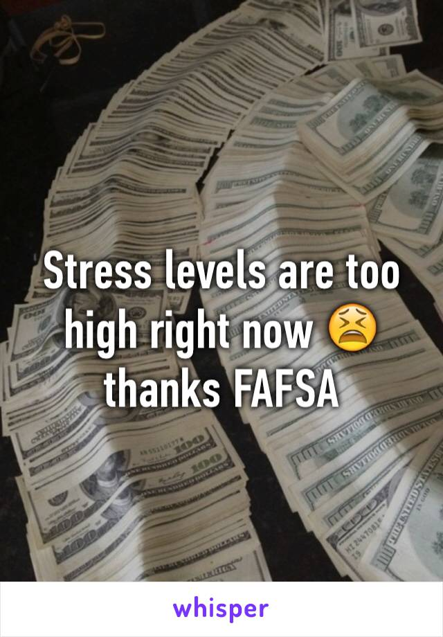 Stress levels are too high right now 😫thanks FAFSA