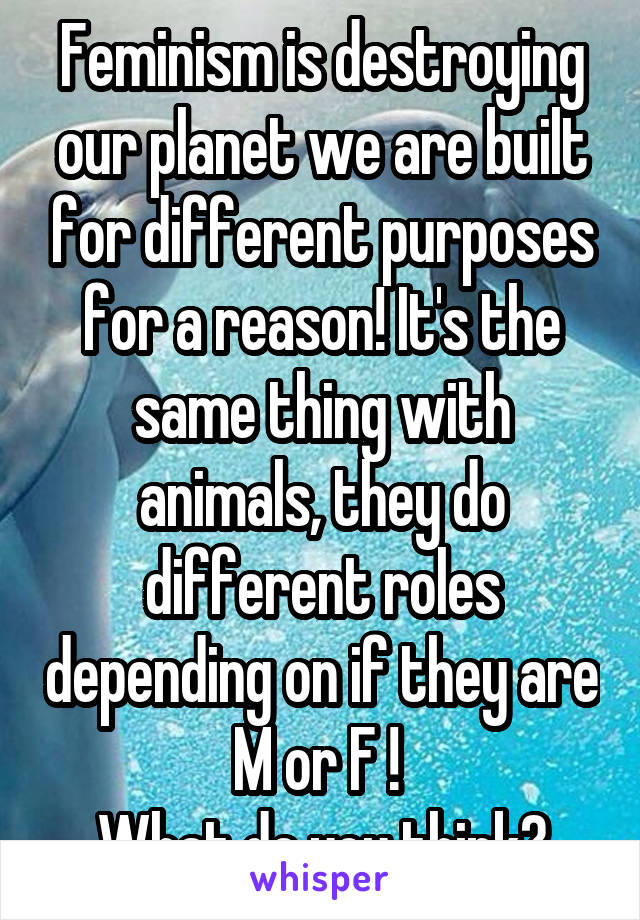 Feminism is destroying our planet we are built for different purposes for a reason! It's the same thing with animals, they do different roles depending on if they are M or F !  What do you think?