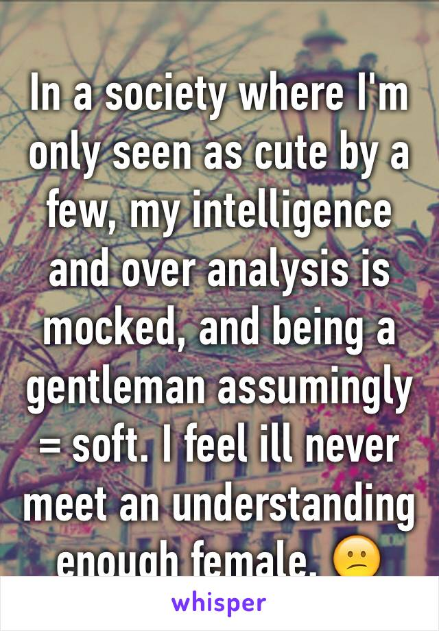 In a society where I'm only seen as cute by a few, my intelligence and over analysis is mocked, and being a gentleman assumingly = soft. I feel ill never meet an understanding enough female. 😕