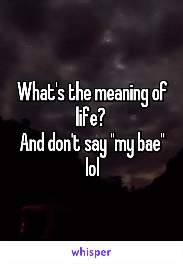 """What's the meaning of life?  And don't say """"my bae"""" lol"""