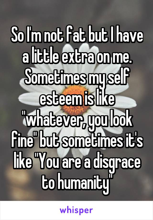 "So I'm not fat but I have a little extra on me. Sometimes my self esteem is like ""whatever, you look fine"" but sometimes it's like ""You are a disgrace to humanity"""