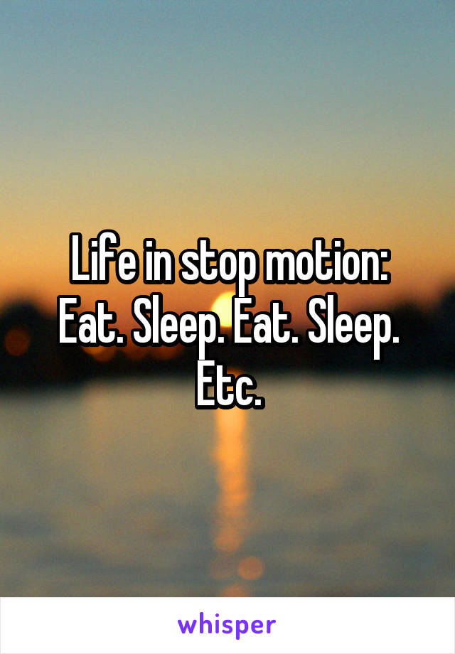 Life in stop motion: Eat. Sleep. Eat. Sleep. Etc.