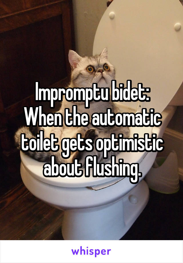 Impromptu bidet: When the automatic toilet gets optimistic about flushing.