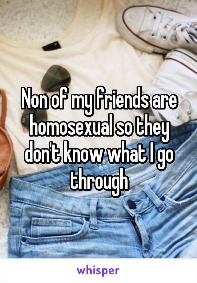 Non of my friends are homosexual so they don't know what I go through