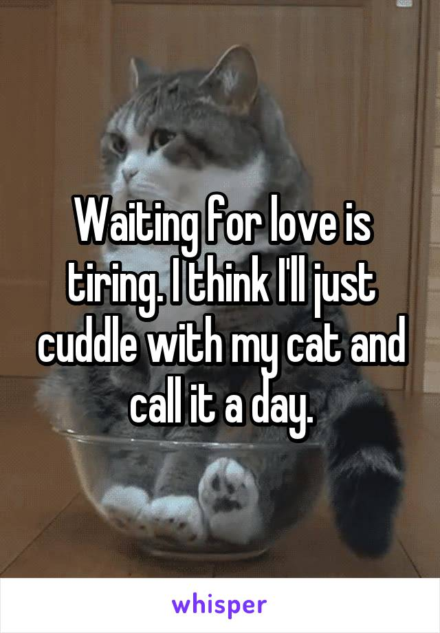 Waiting for love is tiring. I think I'll just cuddle with my cat and call it a day.