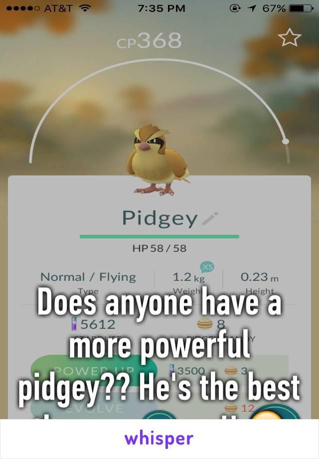 Does anyone have a more powerful pidgey?? He's the best there ever was!! 😝