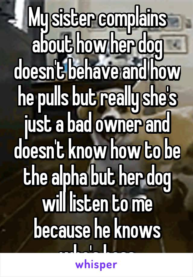 My sister complains about how her dog doesn't behave and how he pulls but really she's just a bad owner and doesn't know how to be the alpha but her dog will listen to me because he knows who's boss