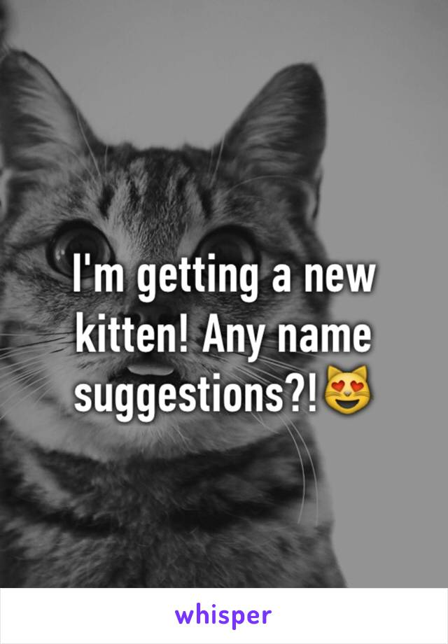 I'm getting a new kitten! Any name suggestions?!😻
