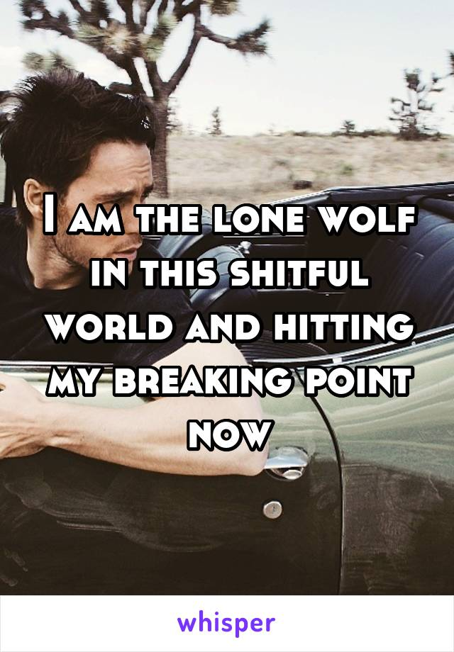 I am the lone wolf in this shitful world and hitting my breaking point now