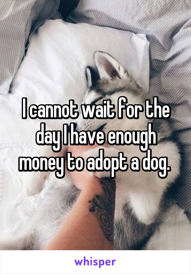 I cannot wait for the day I have enough money to adopt a dog.