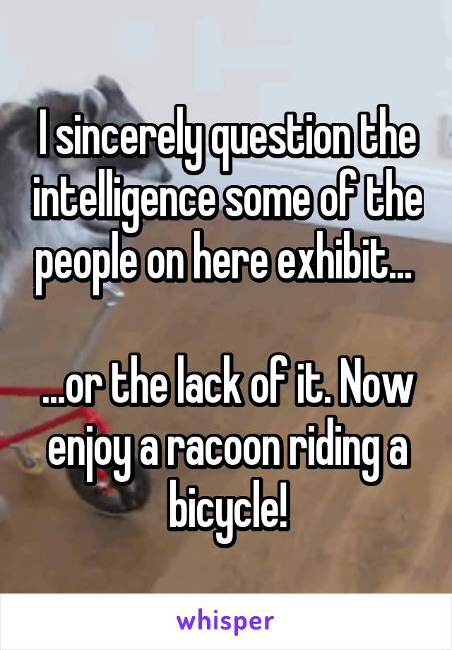 I sincerely question the intelligence some of the people on here exhibit...   ...or the lack of it. Now enjoy a racoon riding a bicycle!