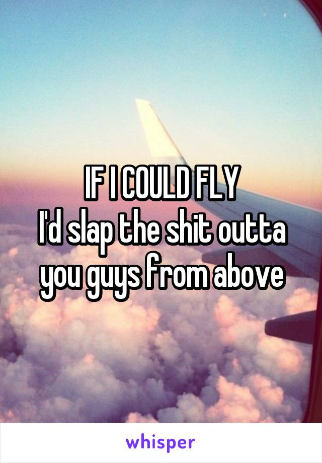 IF I COULD FLY I'd slap the shit outta you guys from above