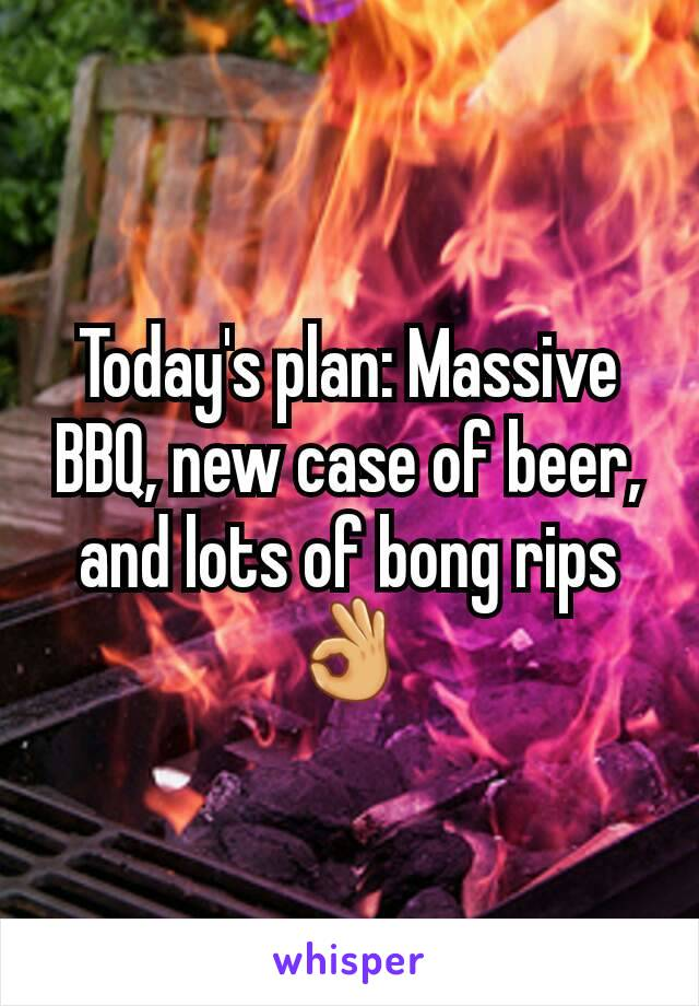 Today's plan: Massive BBQ, new case of beer, and lots of bong rips 👌