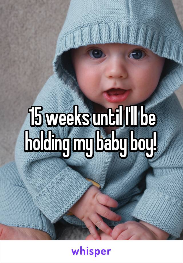 15 weeks until I'll be holding my baby boy!