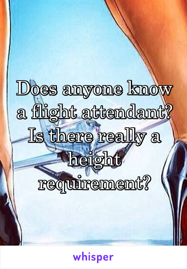 Does anyone know a flight attendant? Is there really a height requirement?