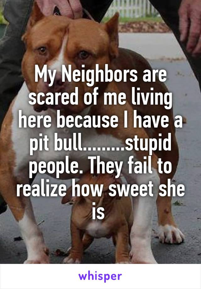 My Neighbors are scared of me living here because I have a pit bull.........stupid people. They fail to realize how sweet she is