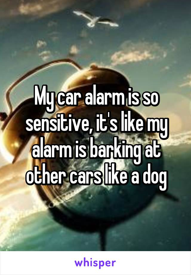 My car alarm is so sensitive, it's like my alarm is barking at other cars like a dog