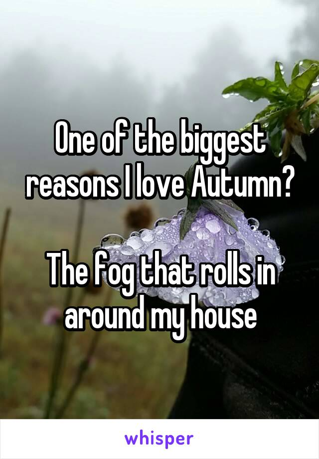 One of the biggest reasons I love Autumn?  The fog that rolls in around my house