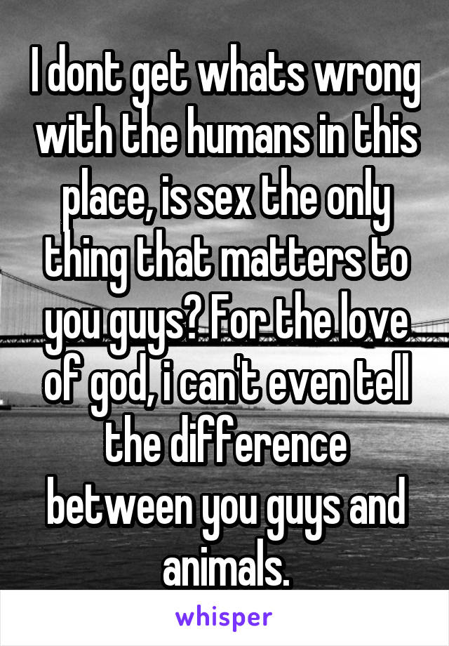 I dont get whats wrong with the humans in this place, is sex the only thing that matters to you guys? For the love of god, i can't even tell the difference between you guys and animals.