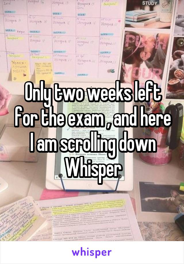 Only two weeks left for the exam , and here I am scrolling down Whisper