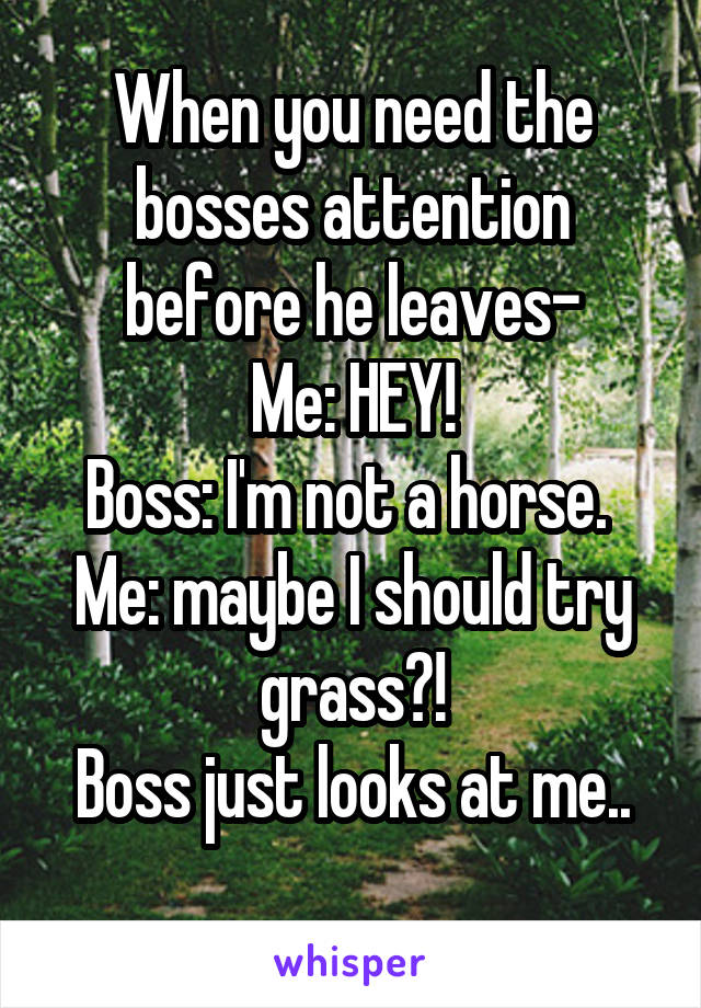 When you need the bosses attention before he leaves- Me: HEY! Boss: I'm not a horse.  Me: maybe I should try grass?! Boss just looks at me..