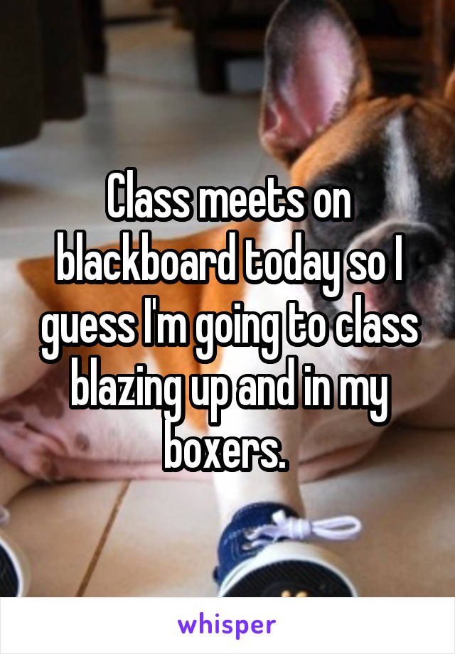 Class meets on blackboard today so I guess I'm going to class blazing up and in my boxers.