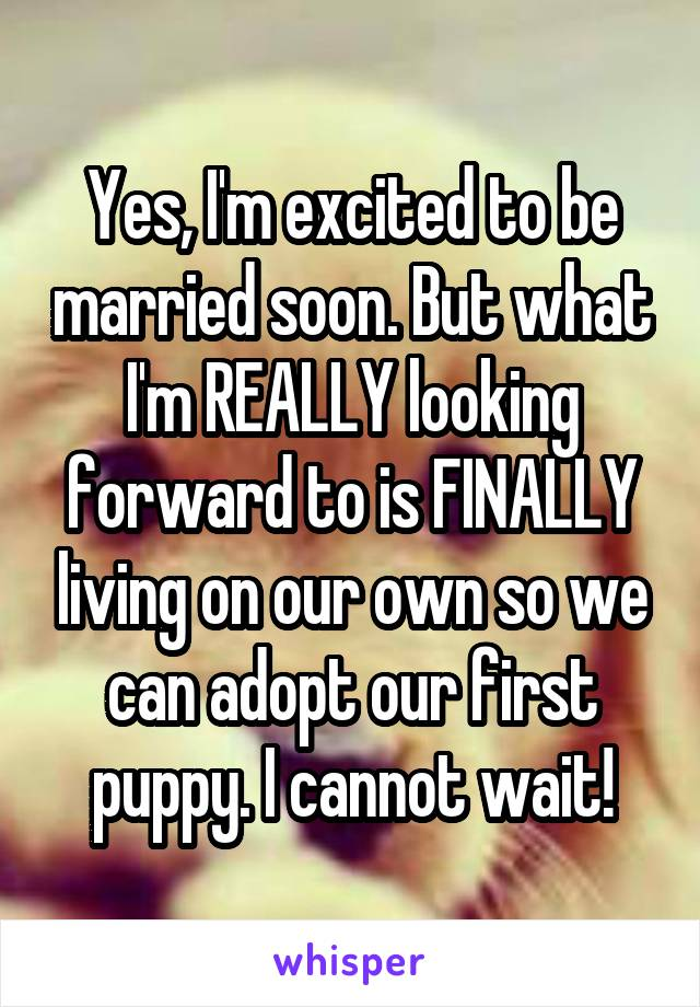 Yes, I'm excited to be married soon. But what I'm REALLY looking forward to is FINALLY living on our own so we can adopt our first puppy. I cannot wait!