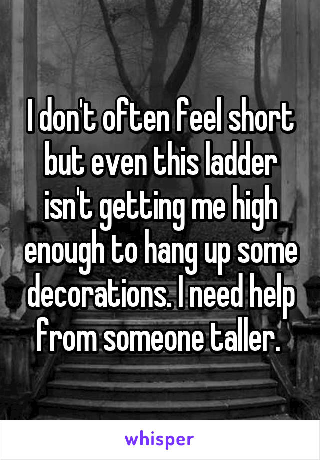 I don't often feel short but even this ladder isn't getting me high enough to hang up some decorations. I need help from someone taller.