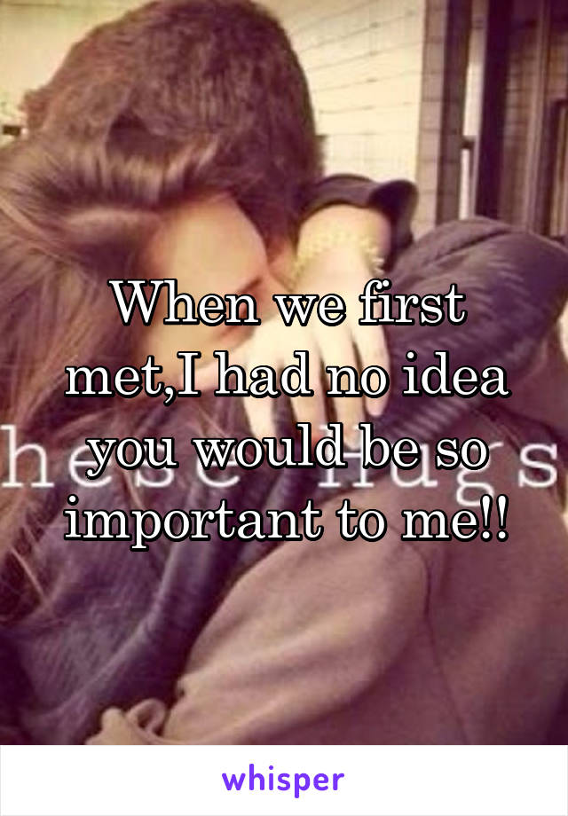 When we first met,I had no idea you would be so important to me!!