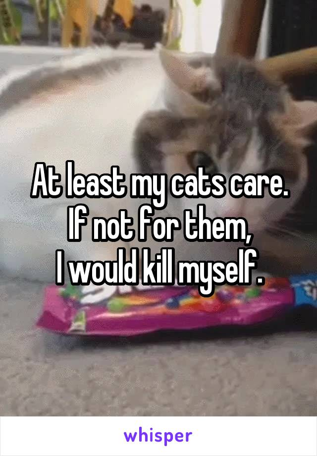 At least my cats care. If not for them, I would kill myself.