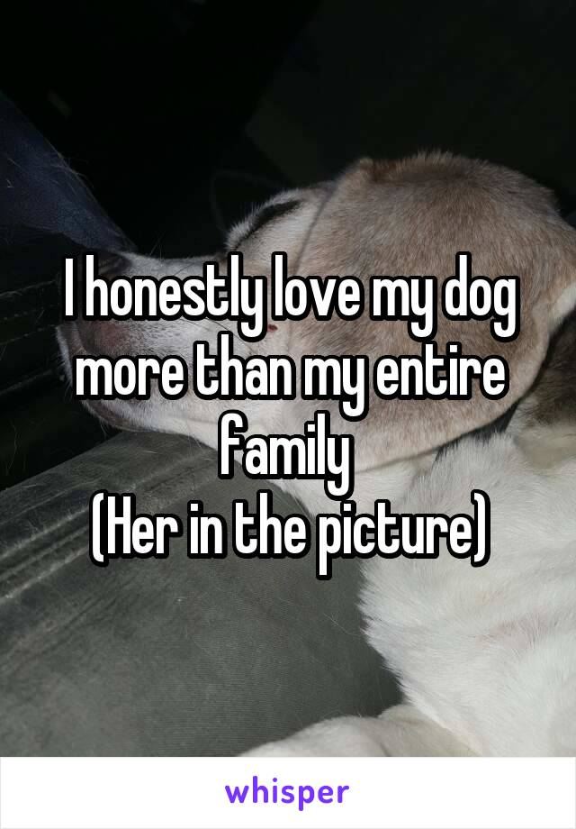 I honestly love my dog more than my entire family  (Her in the picture)