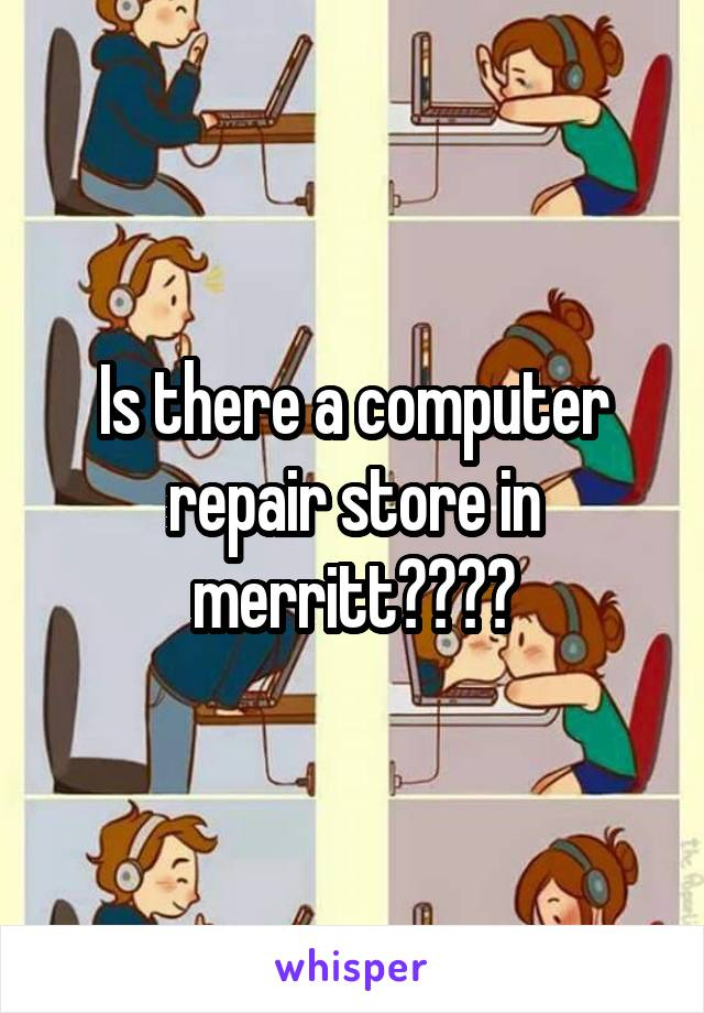 Is there a computer repair store in merritt????