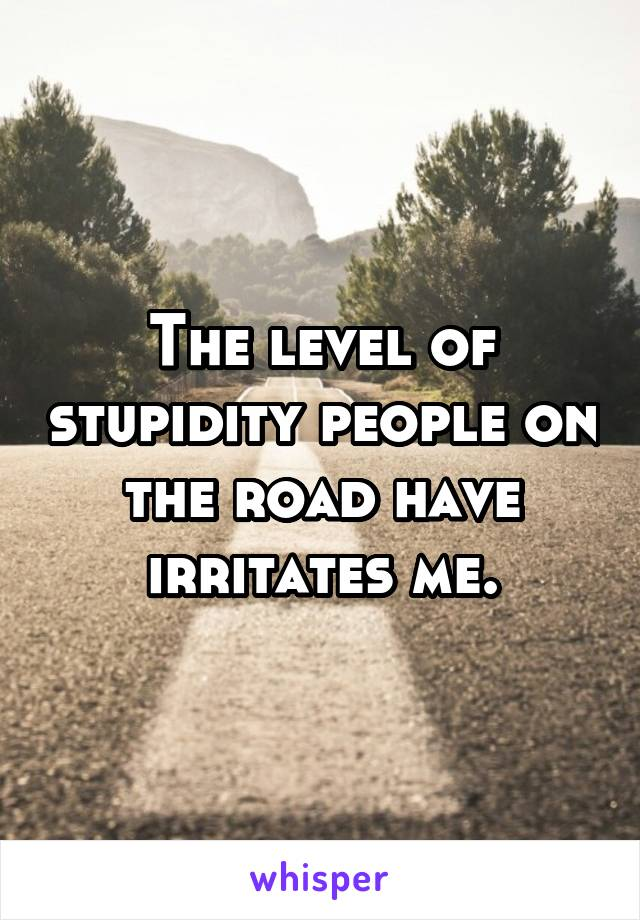 The level of stupidity people on the road have irritates me.