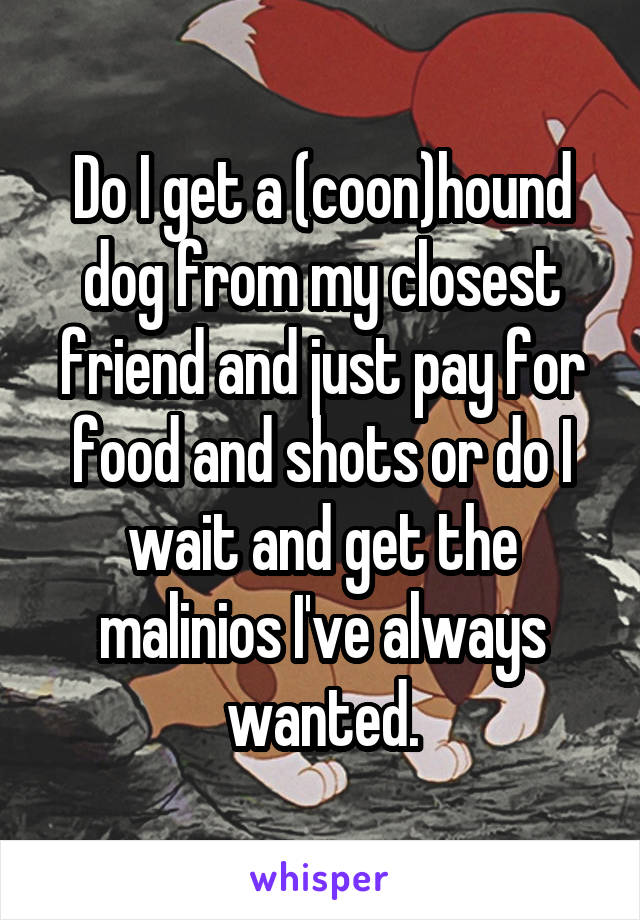 Do I get a (coon)hound dog from my closest friend and just pay for food and shots or do I wait and get the malinios I've always wanted.