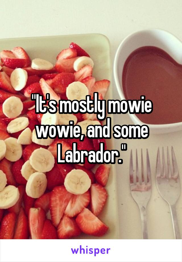 """""""It's mostly mowie wowie, and some Labrador."""""""