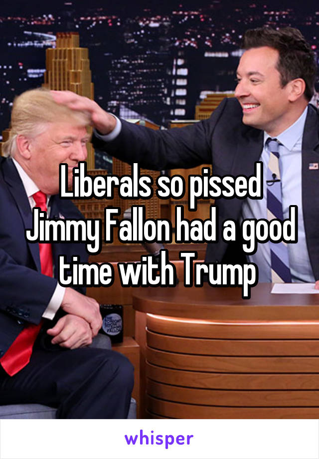 Liberals so pissed Jimmy Fallon had a good time with Trump