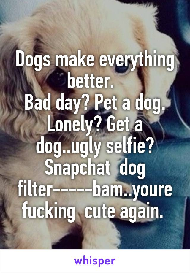Dogs make everything better.   Bad day? Pet a dog. Lonely? Get a dog..ugly selfie? Snapchat  dog filter-----bam..youre fucking  cute again.