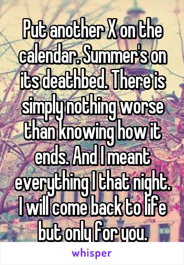 Put another X on the calendar. Summer's on its deathbed. There is simply nothing worse than knowing how it ends. And I meant everything I that night. I will come back to life but only for you.