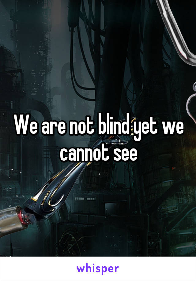We are not blind yet we cannot see