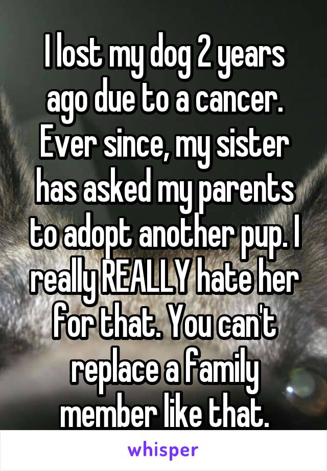 I lost my dog 2 years ago due to a cancer. Ever since, my sister has asked my parents to adopt another pup. I really REALLY hate her for that. You can't replace a family member like that.