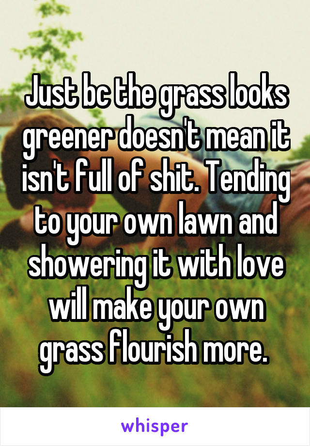 Just bc the grass looks greener doesn't mean it isn't full of shit. Tending to your own lawn and showering it with love will make your own grass flourish more.