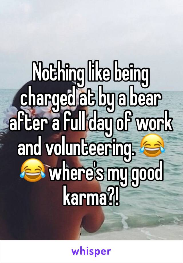 Nothing like being charged at by a bear after a full day of work and volunteering. 😂😂 where's my good karma?!
