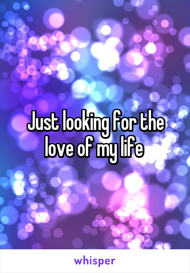 Just looking for the love of my life