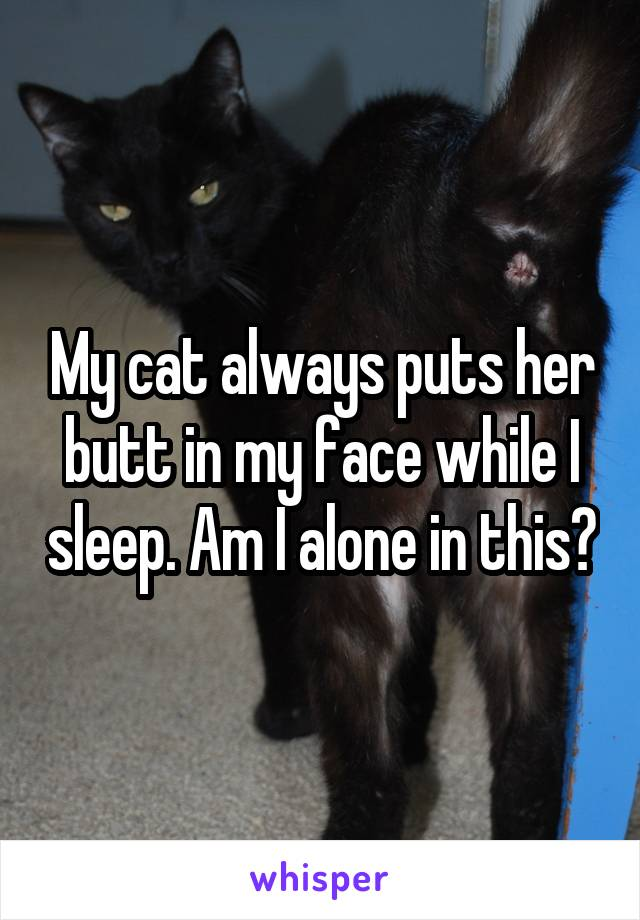 My cat always puts her butt in my face while I sleep. Am I alone in this?