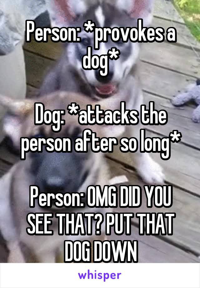Person: *provokes a dog*  Dog: *attacks the person after so long*  Person: OMG DID YOU SEE THAT? PUT THAT DOG DOWN